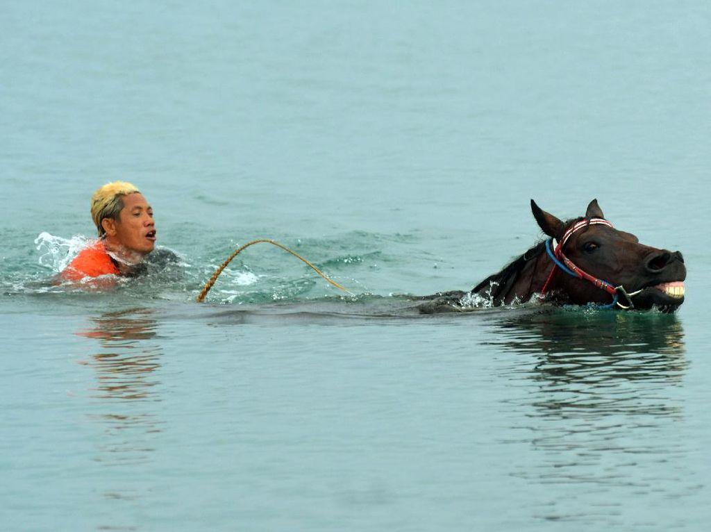Melatih Kuda Pacu Hingga ke Tengah Laut
