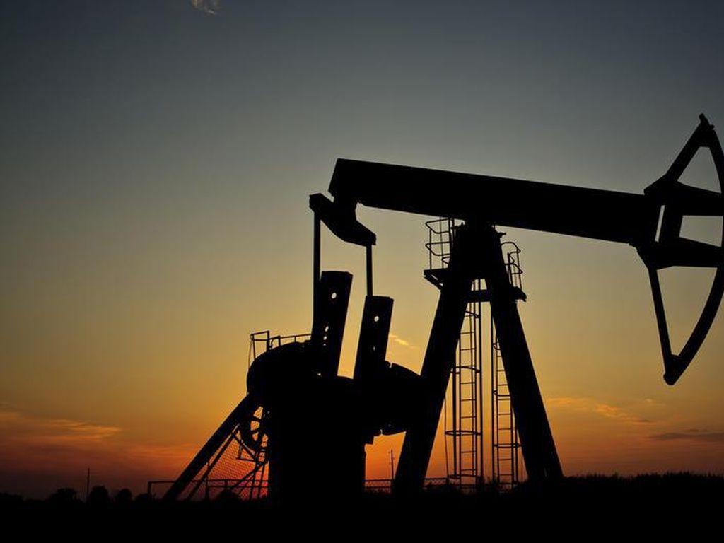 OPEC+ Akan Tindak Negara yang Tak Pangkas Produksi Minyak