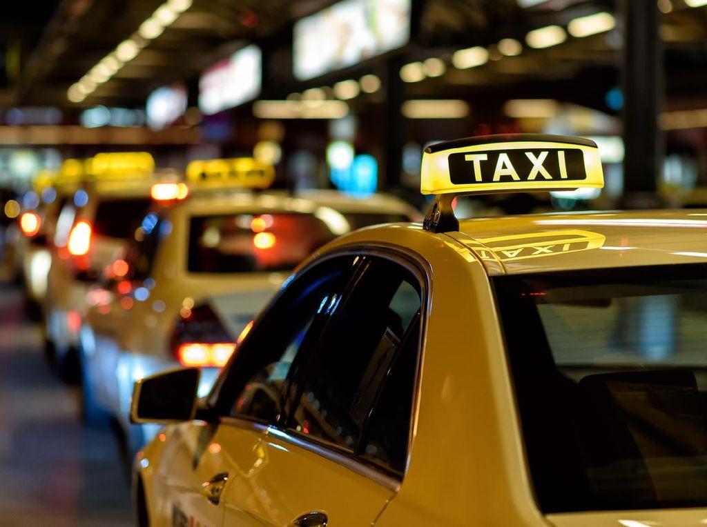Wah, Sopir Taksi Antarkan Mahasiswi dari Spanyol ke Italia Gratis!
