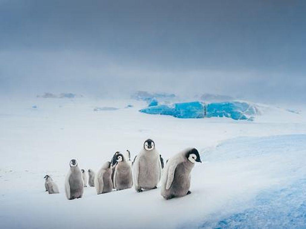 Lapisan Es Antartika yang Hampir Runtuh