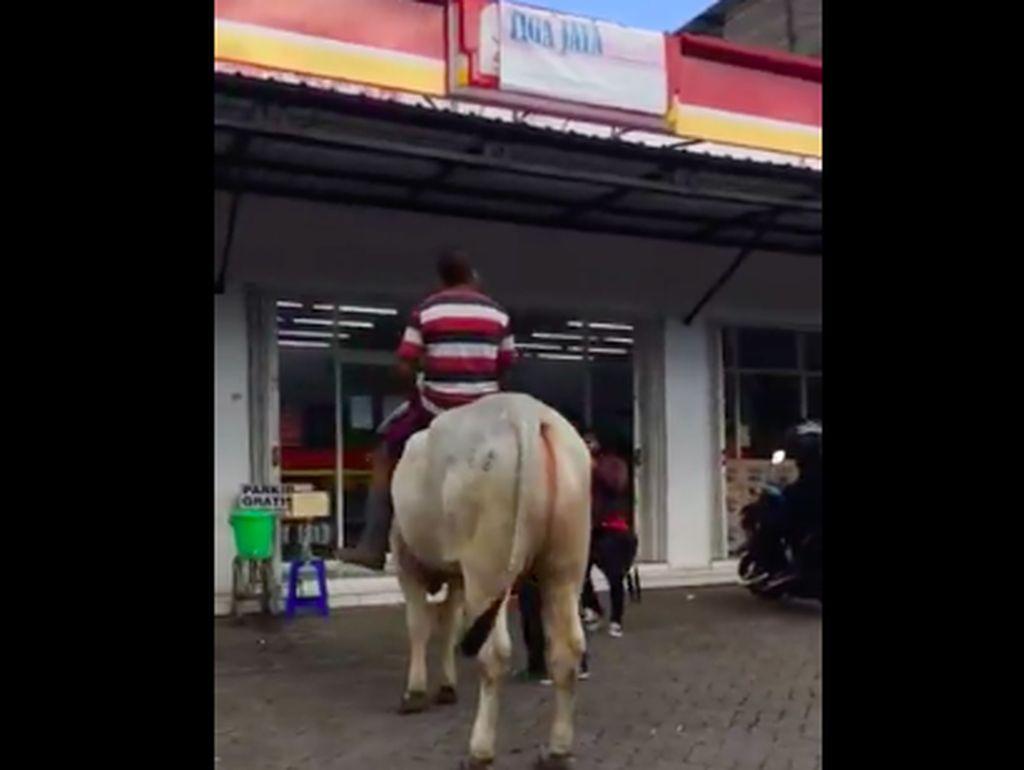 Nyeleneh! Pria di Magetan ke Minimarket dengan Tunggangi Sapi