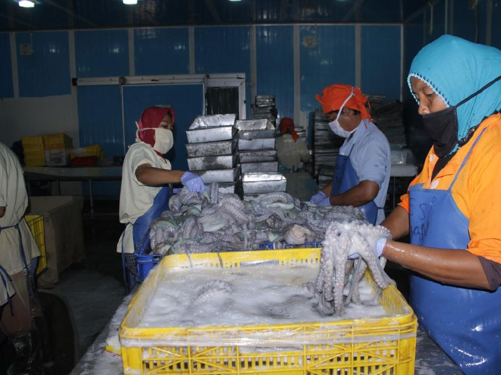 KKP Pastikan Cold Storage UPT Tampung Ikan Nelayan Selama COVID-19