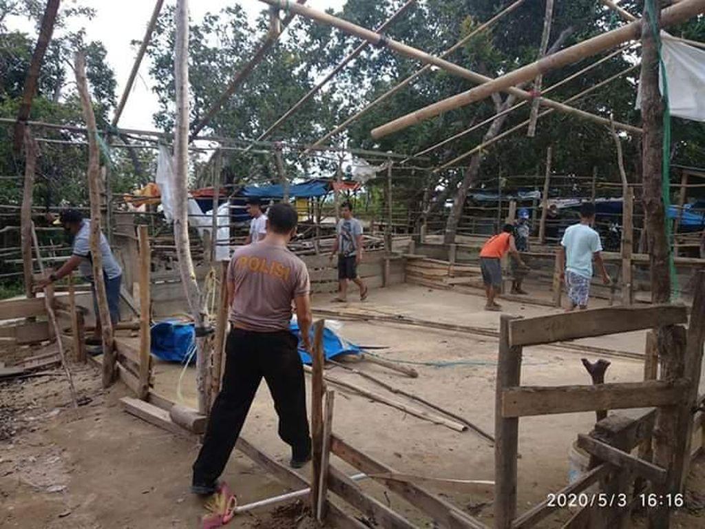 Jadi Tempat Kumpul Warga, Arena Sabung Ayam di Kendari Dibongkar Polisi