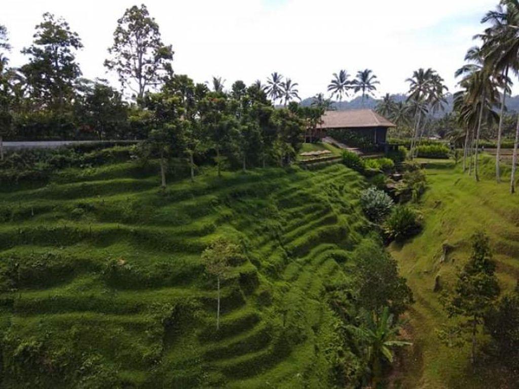 Rindu Hijaunya Suasana Secret Garden Village Bali