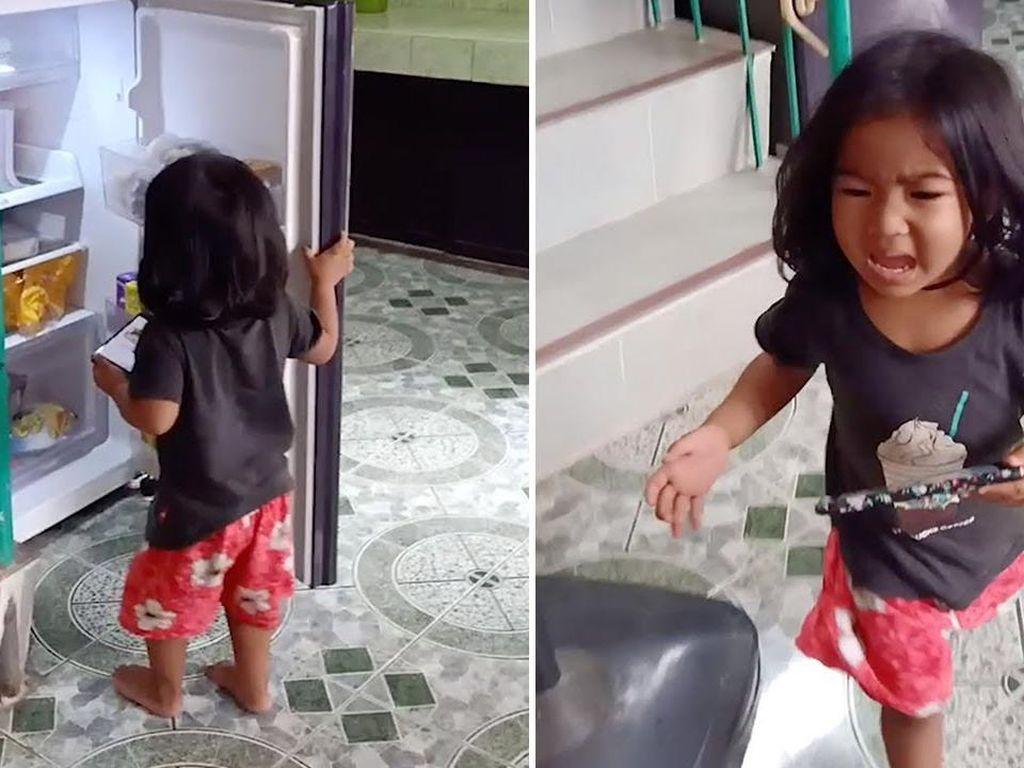 Agar Anaknya Tak Curi Makanan, Ibu Ini Pasang Foto Hantu di Kulkas