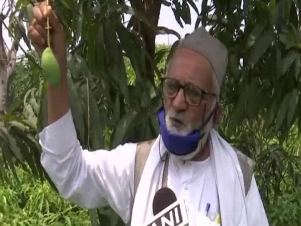 Doctor Mango Varian Terbaru Mangga Didedikasikan Untuk Petugas Kesehatan