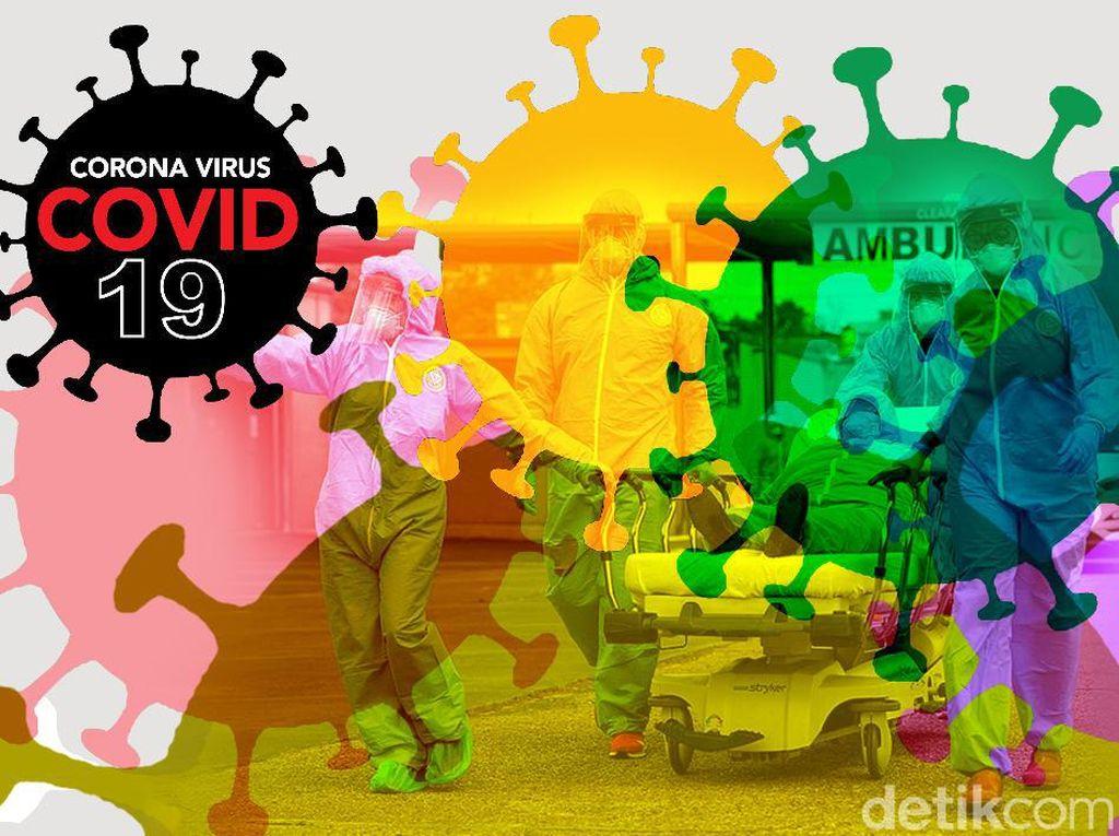 AS Setop Dana Studi Kelelawar di China, Ilmuwan Khawatir COVID-20