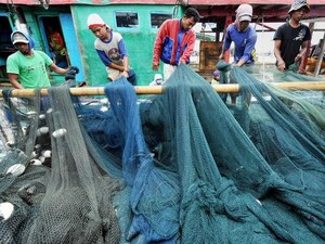 Investigasi Dugaan Eksploitasi 14 ABK WNI di Kapal China Berlanjut