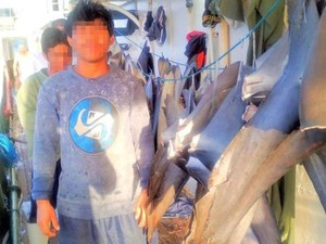 Kesaksian ABK Indonesia di Kapal China: Tidur Cuma 3 Jam, Makan Umpan Ikan