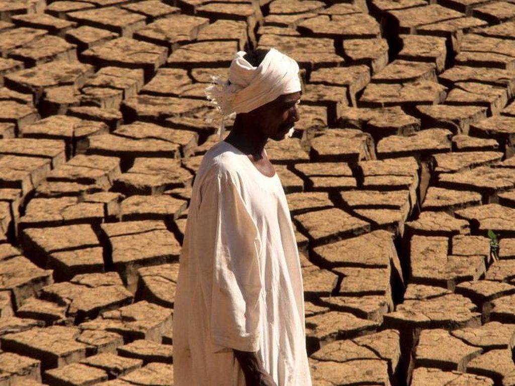 Lebih dari 3 Miliar Populasi Akan Hidup dalam Suhu Panas Ekstrem pada 2070