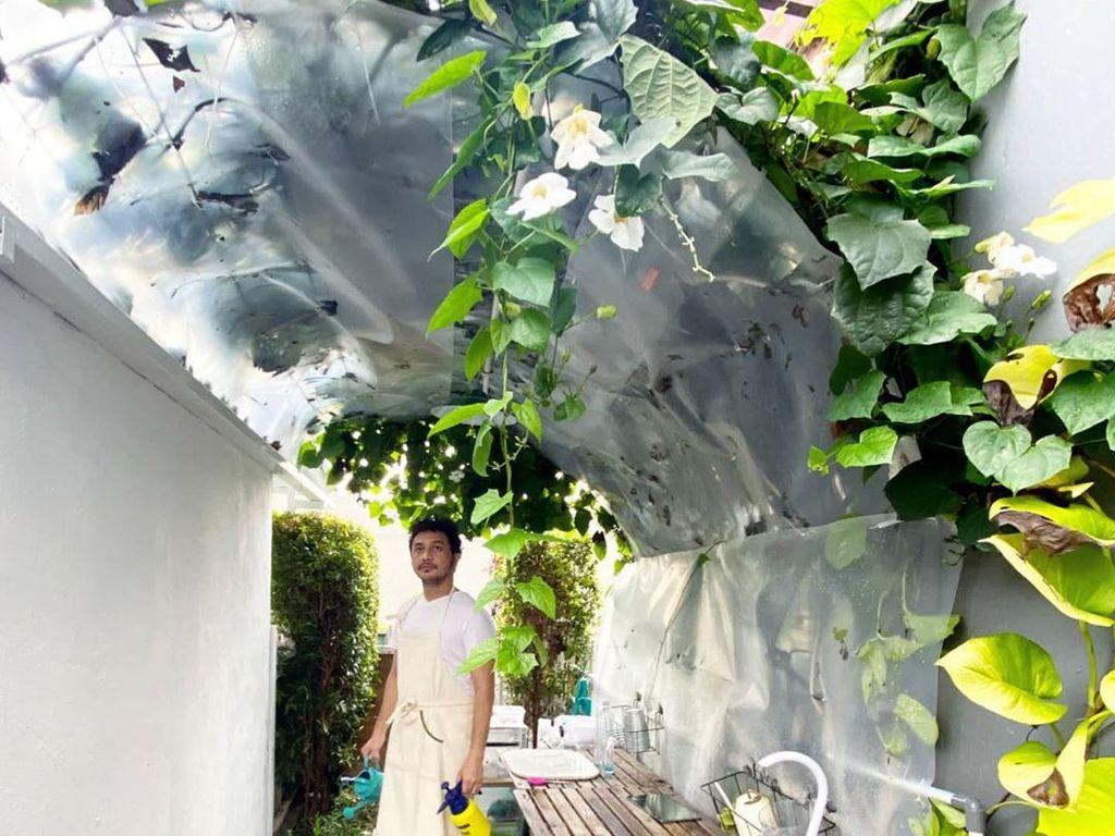 Gabut! Giring Ganesha Sibuk Tanam Bawang dan Brokoli di Rumah