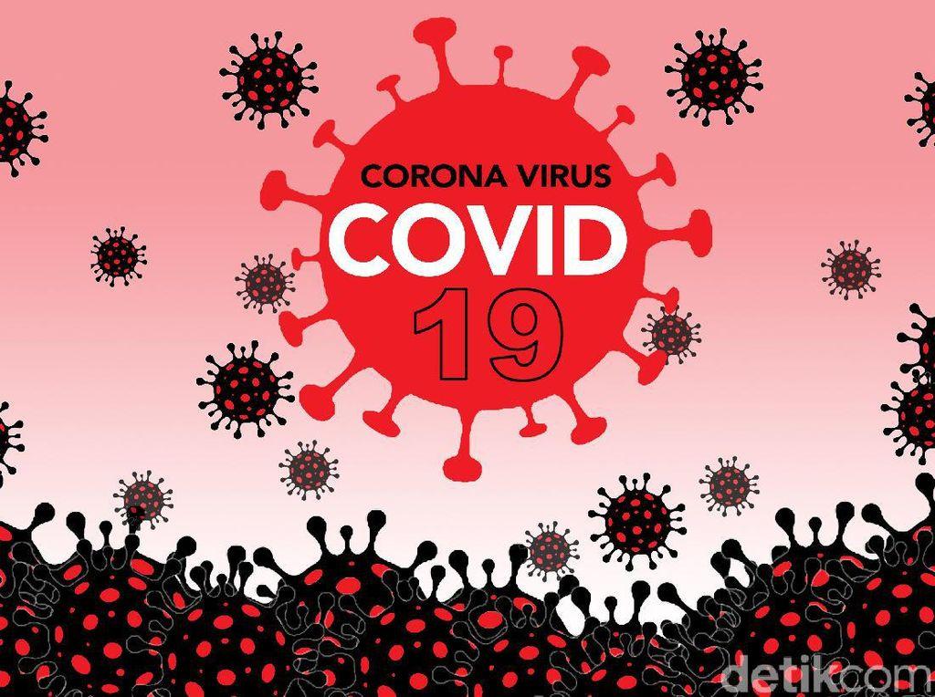 Gugus Tugas: 61 Kabupaten/Kota Belum Terinfeksi Corona, 43 Zona Hijau