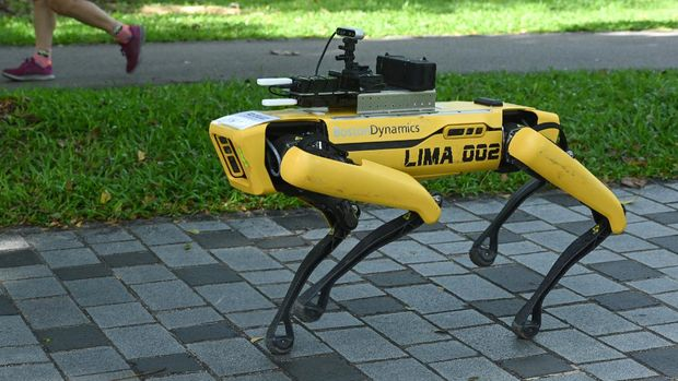A four-legged robot called Spot, which broadcasts a recorded message reminding people to observe safe distancing as a preventive measure against the spread of the COVID-19 novel coronavirus, is seen during its two-week trial at the Bishan-Ang Moh Kio Park in Singapore on May 8, 2020. (Photo by Roslan RAHMAN / AFP)