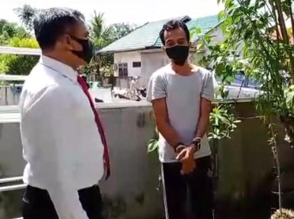 Hobi Tanam Ganja, Pria di Kendari Ditangkap Polisi