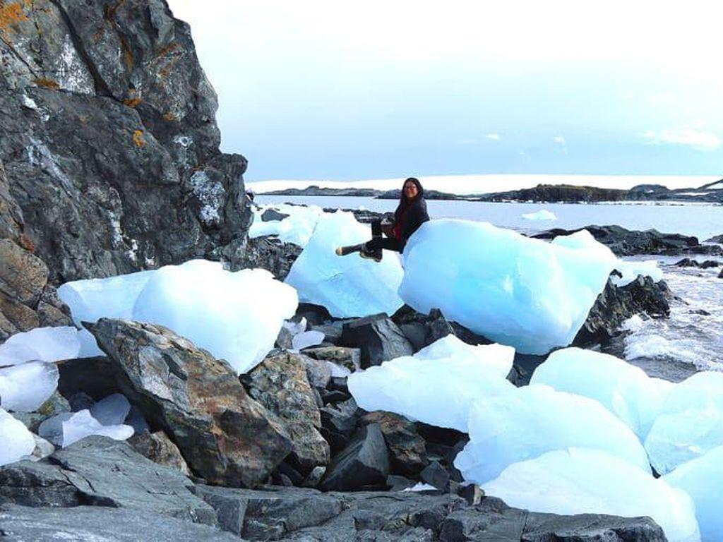 Kehidupan Antartika yang Bebas Corona, Pariwisatanya?
