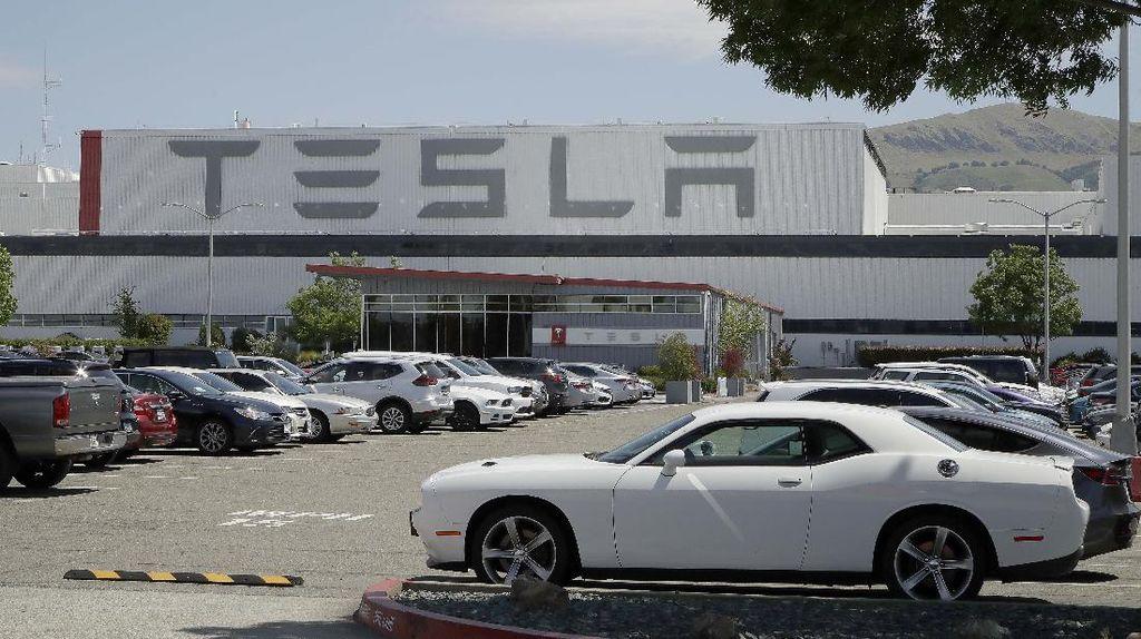 Langgar Lockdown, Pabrik Tesla di California Kembali Beroperasi
