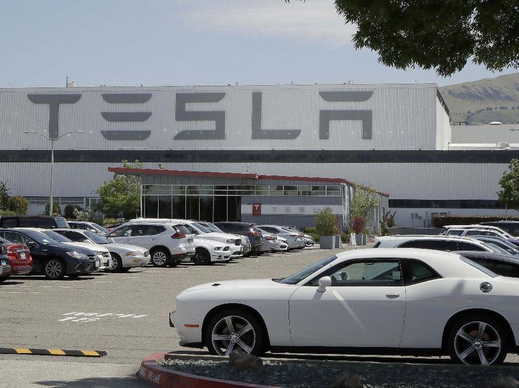 Elon Musk Bakal Bikin Gigafactory Lagi di Asia, Negara Mana Dipilih?