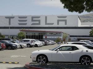 Bikin Pabrik Gigafactory Lagi di Asia, Elon Musk Pilih India?