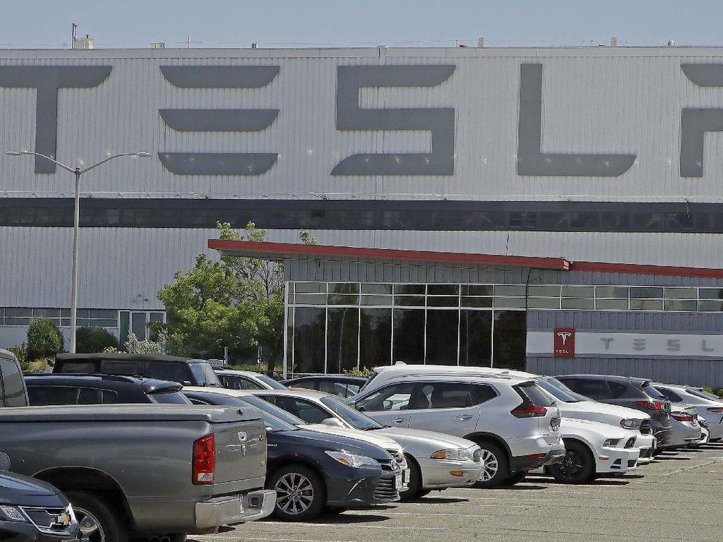 Dirut MIND ID Bicara Kabar Tesla Mau Bikin Pabrik di RI