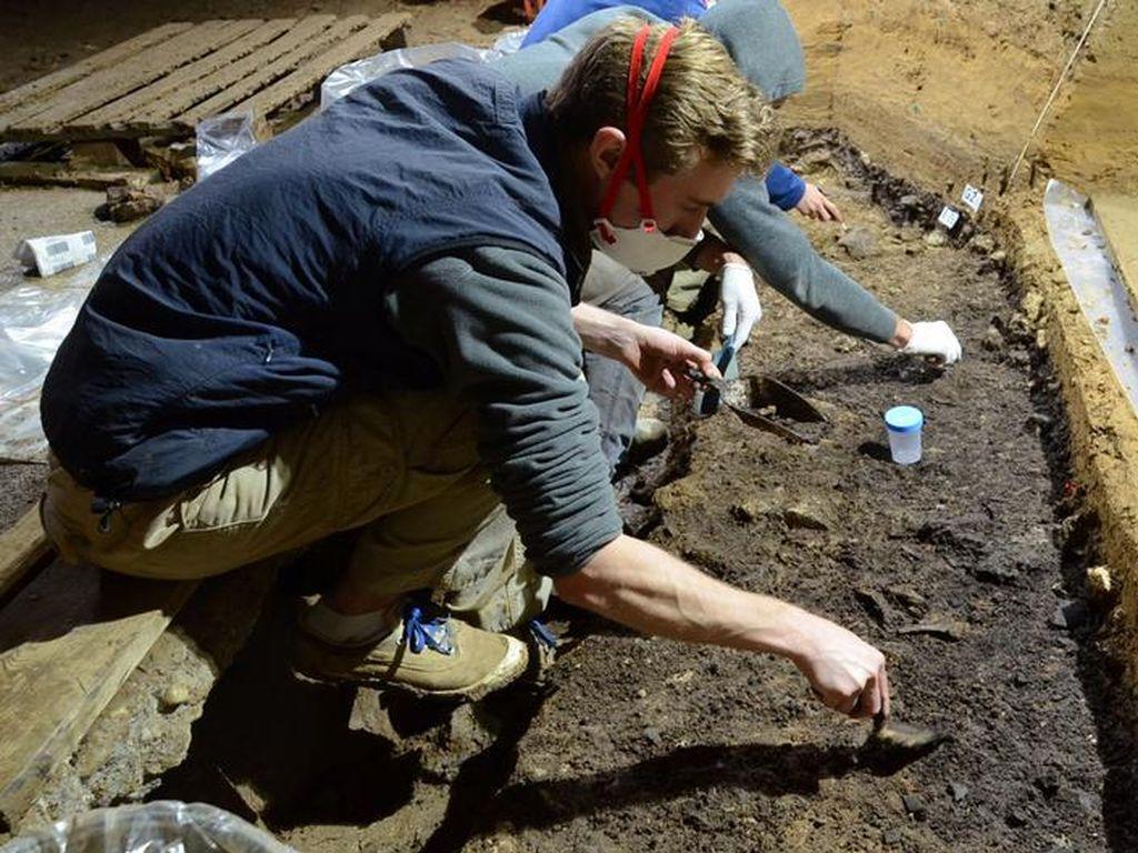 Temuan Fosil Bulgaria: Homo Sapiens Tiba di Eropa Lebih Awal dari Perkiraan