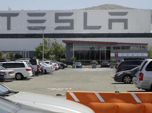Tesla Pede Produksi 500 Ribu Unit Mobil Tahun Ini