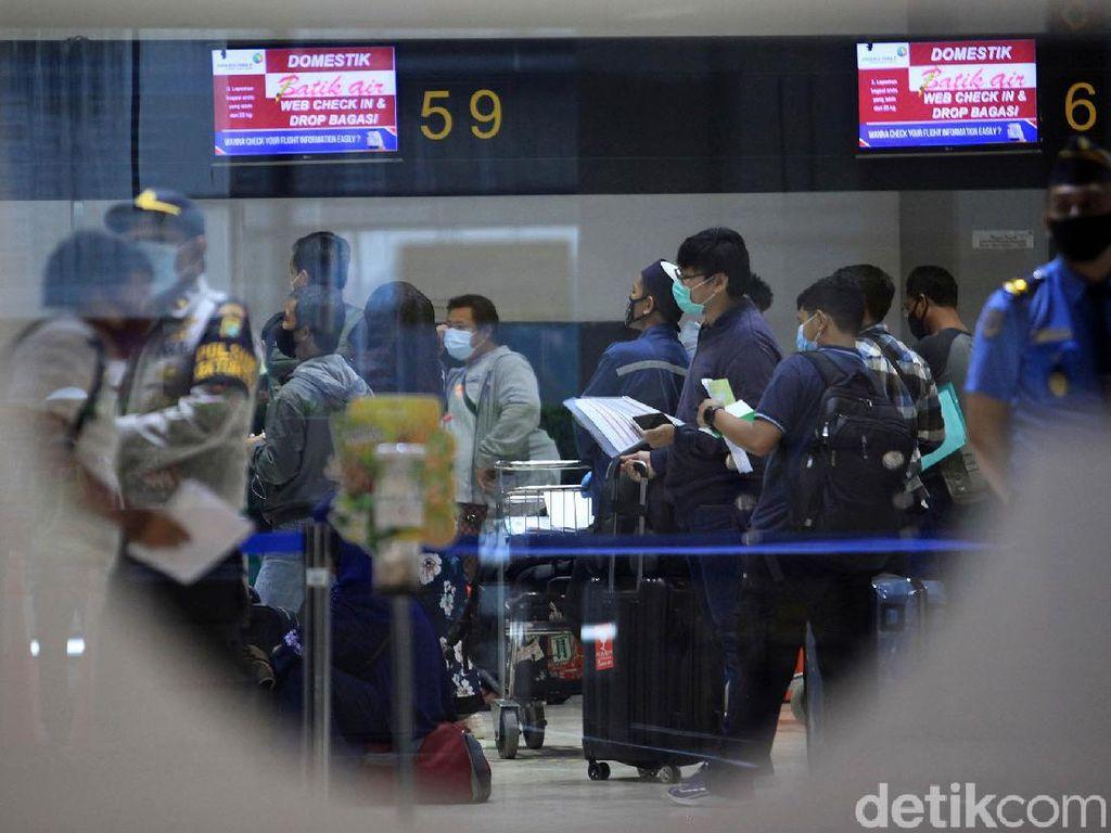 8 Fakta soal Mafia Karantina di Pintu Masuk Indonesia