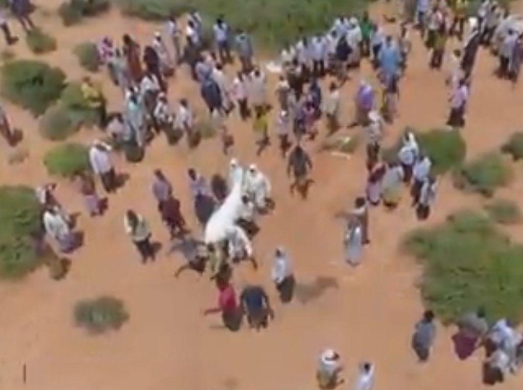 Video Petugas Makam di Somalia Kewalahan Urus Jenazah