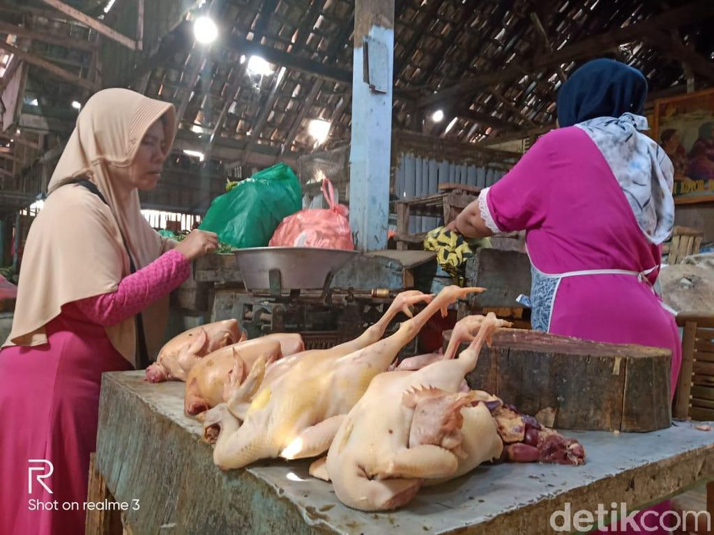 Harga Daging Ayam Melonjak Hingga Rp 40 Ribu per Kg di Kota Probolinggo