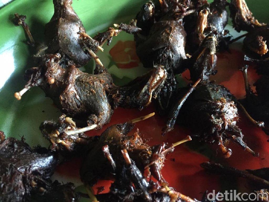 Kelelawar Bacem di Gunungkidul Juga Kena Dampak Pandemi Corona