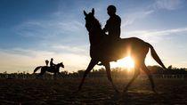 Lockdown Dilonggarkan, Pacuan Kuda di Uruguay Kembali Berdenyut