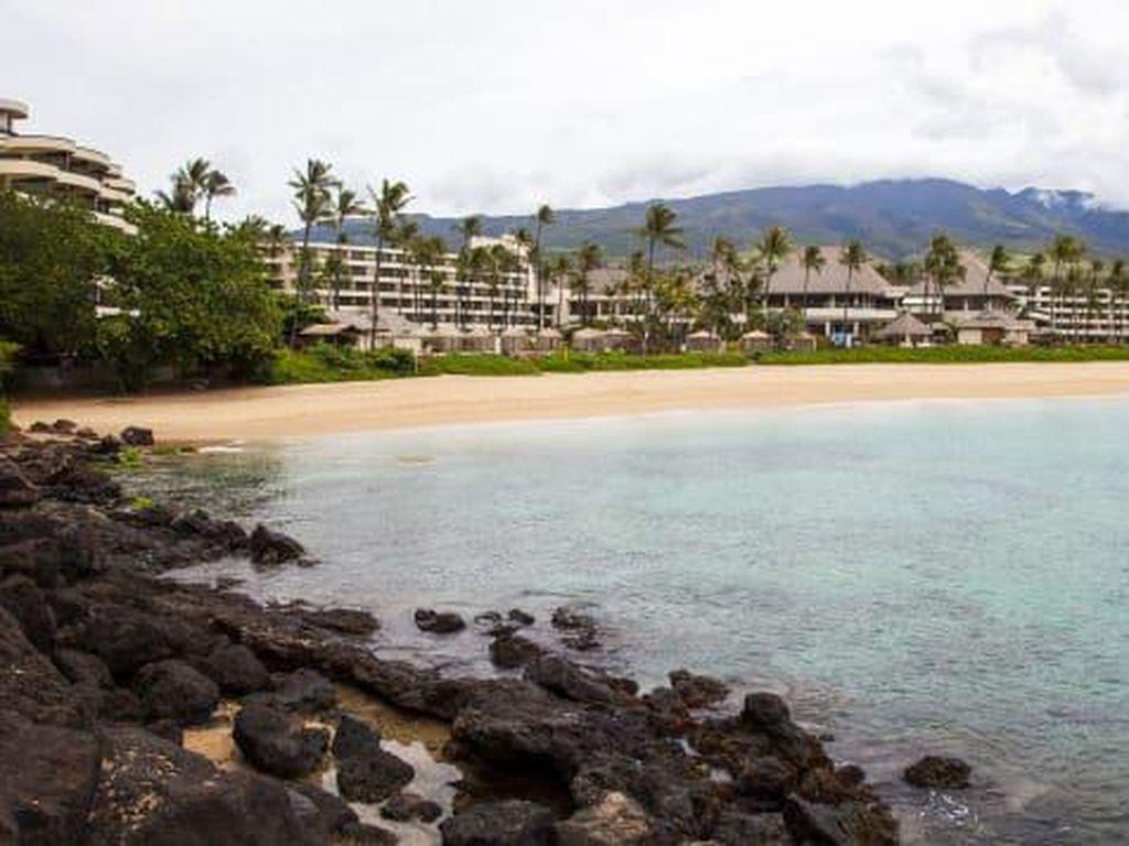 Harus Karantina Malah Posting Foto Liburan, Turis Ditangkap di Hawaii