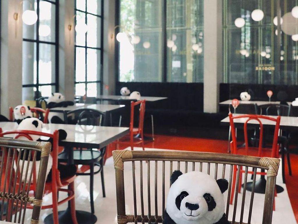 Cara Baru Jaga Jarak di Restoran: Makan Bareng Boneka Panda