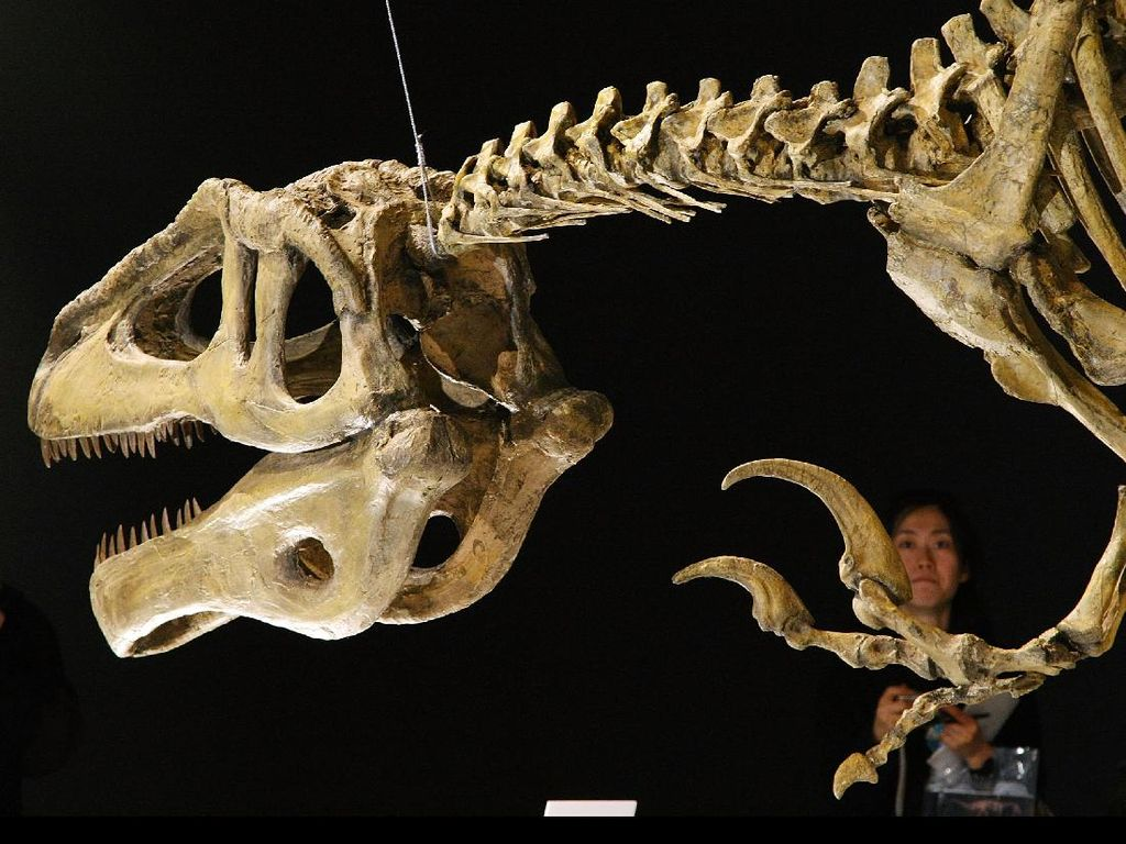 Fosil Dinosaurus Penghuni Terakhir Bumi Ada di Argentina