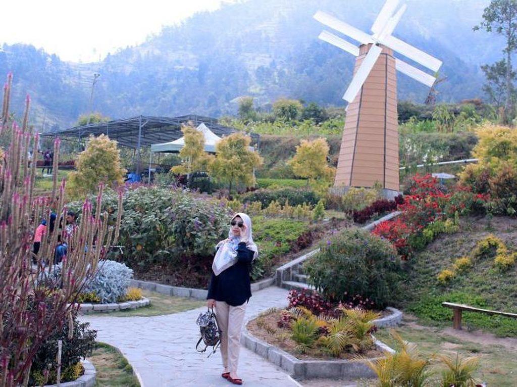 Murah Meriah Wisata ke Merapi Garden