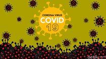 Update Kasus Corona di RI 2 Juni: 27.549 Positif, 7.935 Sembuh, 1.663 Meninggal