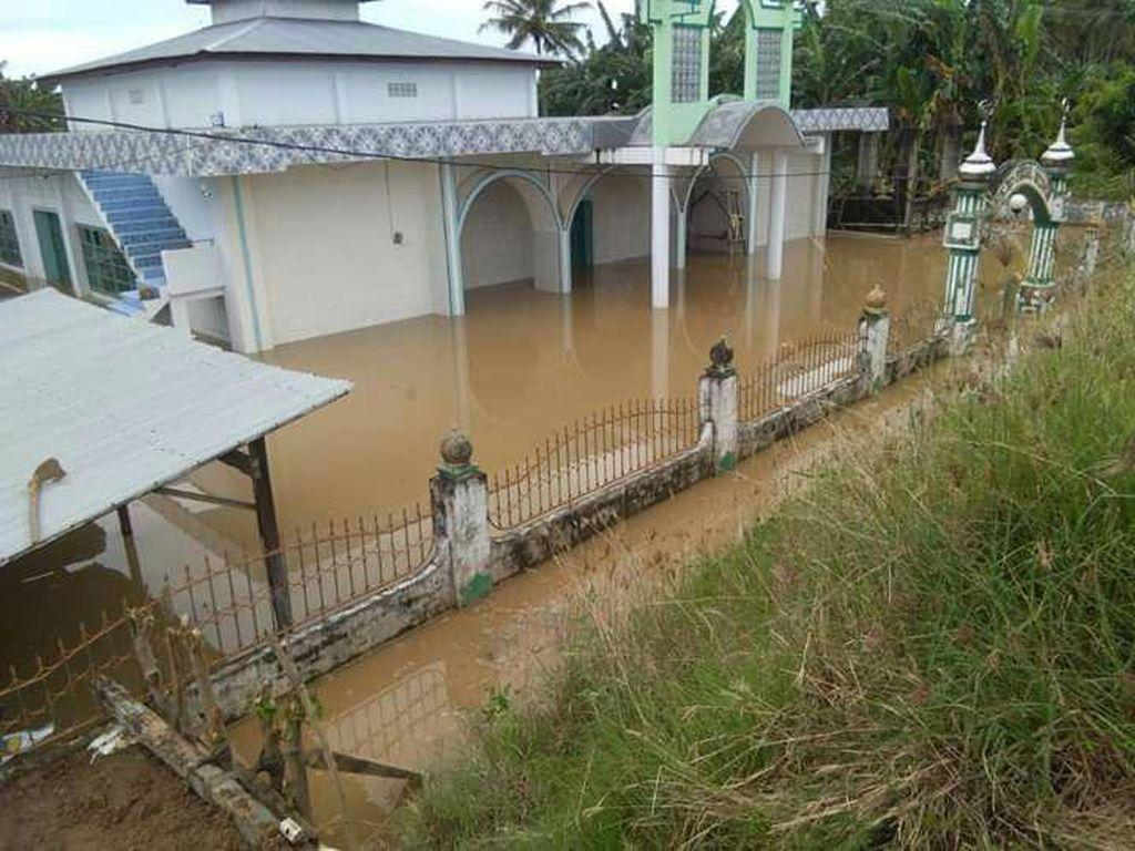Sungai Saddang Meluap Rendam Permukiman Warga di Pinrang, Sulsel