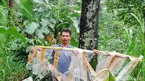 Lereng Gunung Merapi Dihujani Balon Udara, Taman Nasional Aman
