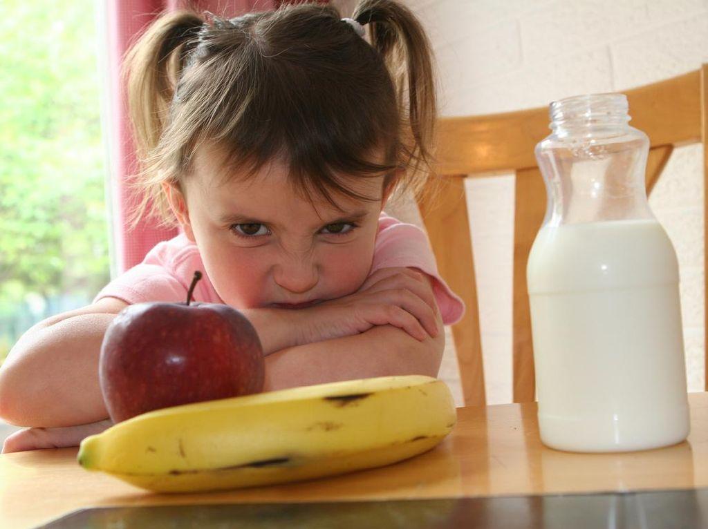 7 Penyebab Anak Mogok Makan dan Cara Mengatasinya