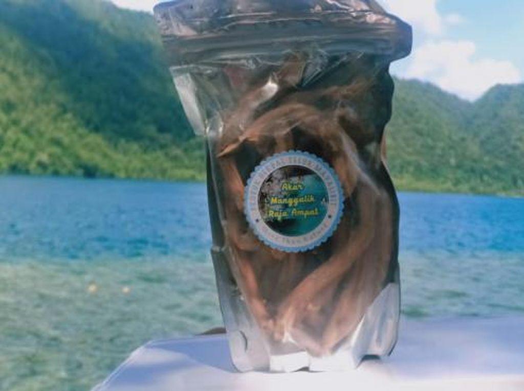 Akar Mangalik, Herbal Raja Ampat yang Jadi Buruan Turis