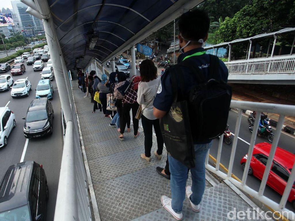 Bila Motor Kena Ganjil Genap, TransJ Diminta Perbanyak Bus-Perluas Halte