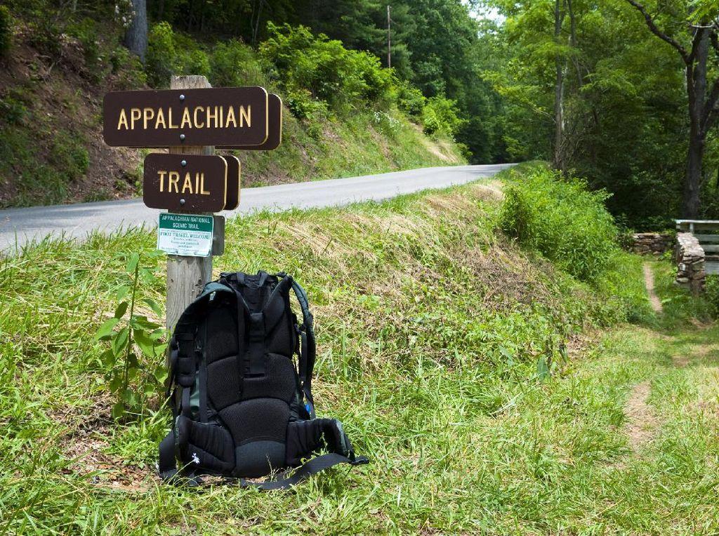 Dicari! Penyuka Bir dan Hiking yang Siap Dibayar Ratusan Juta