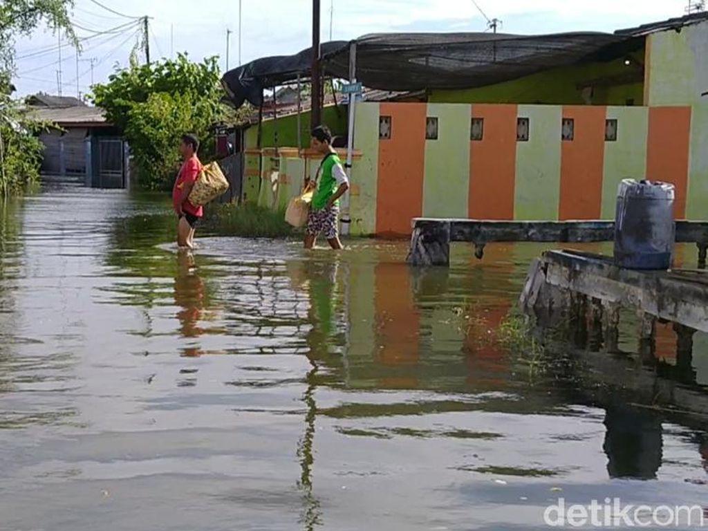 Banjir Rob di Kota Pekalongan, Walkot: 7.700 KK Terdampak