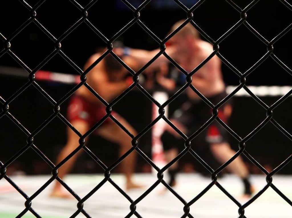 Terungkap! Banyak Petarung MMA Pakai Ganja