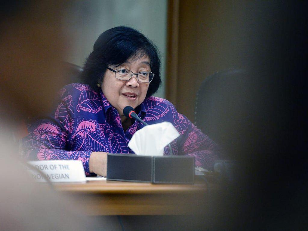 Menteri LHK Siti Nurbaya Luruskan soal Deforestasi dan Hutan Primer
