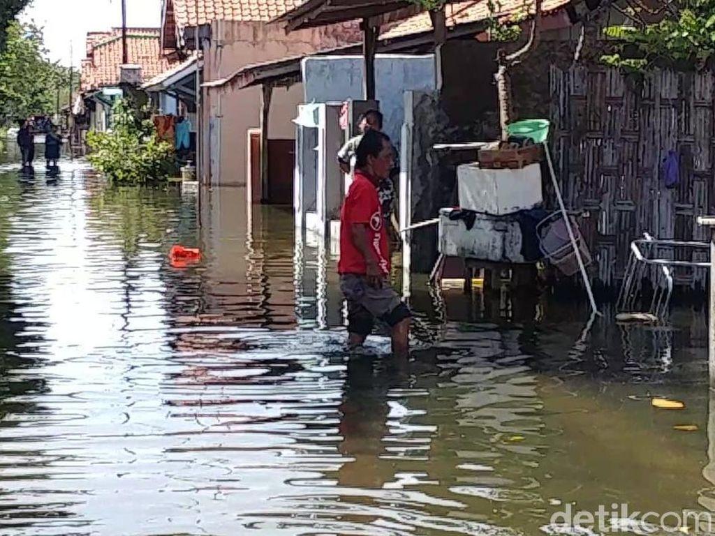 Banjir Rob di Pekalongan Belum Surut, Warga Evakuasi Harta Benda