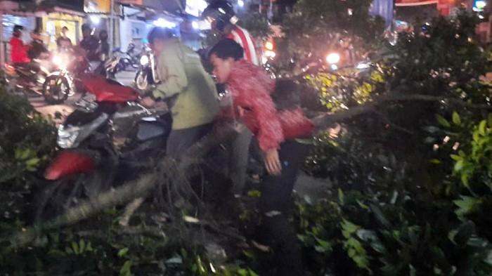Truk Tabrak Pohon di Sukabumi
