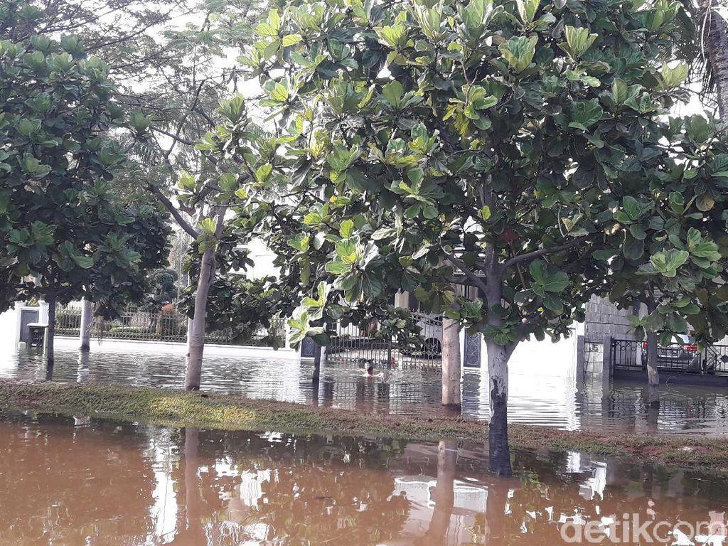 Lurah Pluit: 4 RW Terdampak Akibat Banjir Rob, 55 KK Mengungsi