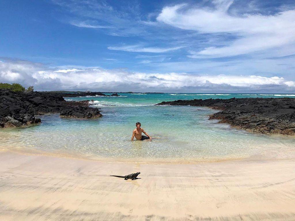 Foto: Traveler Berteman dengan Satwa Liar di Pulau Terpencil