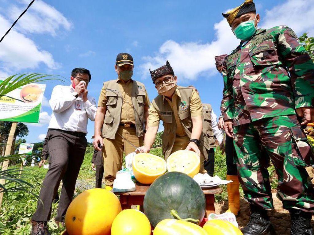 Bupati Anas Simulasi New Normal di Destinasi Wisata Banyuwangi