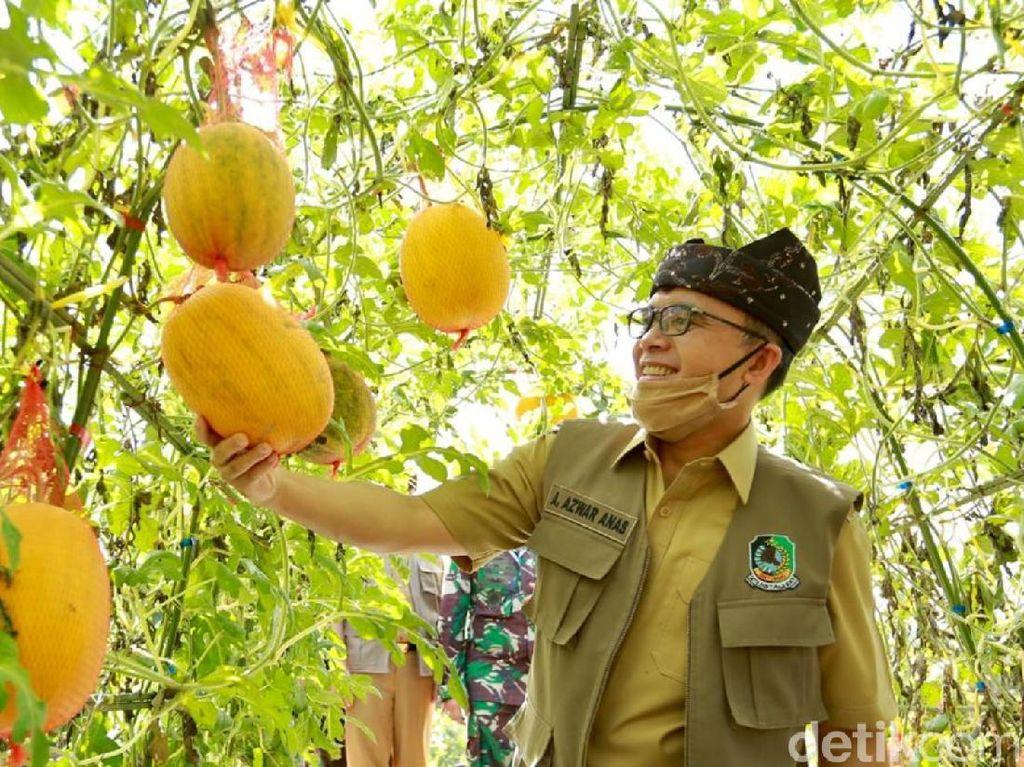 Agro Wisata Tamansuruh, Destinasi Banyuwangi yang Siap Sambut New Normal